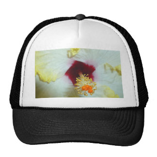 Hibiscus Yellow w Red center Hats