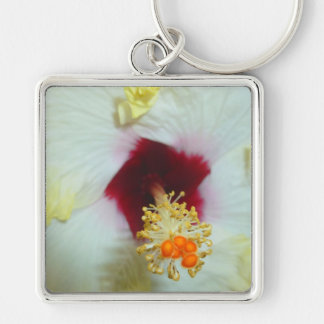 Hibiscus Yellow w Red center Key Chains