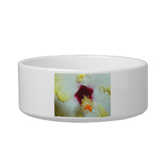 Hibiscus Yellow w Red center Pet Bowl