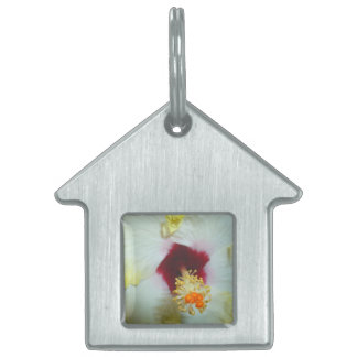 Hibiscus Yellow w Red center Pet Tags