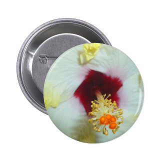 Hibiscus Yellow w Red center Pins
