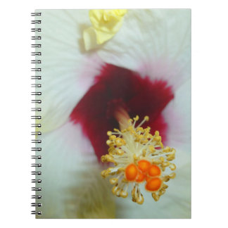 Hibiscus Yellow w Red center Spiral Note Book