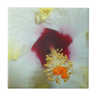 Hibiscus Yellow w Red center Tiles