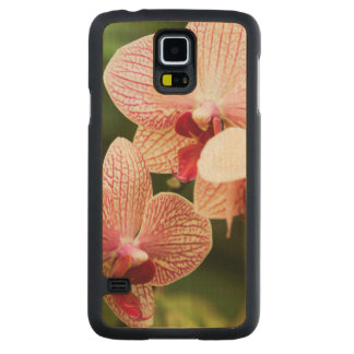 Híbrido anaranjado de la orquídea, Suráfrica Funda De Galaxy S5 Slim Arce