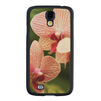 Híbrido anaranjado de la orquídea, Suráfrica Funda De Galaxy S4 Slim Arce