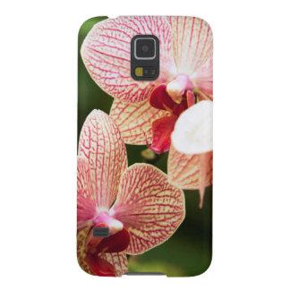 Híbrido anaranjado de la orquídea, Suráfrica Fundas De Galaxy S5