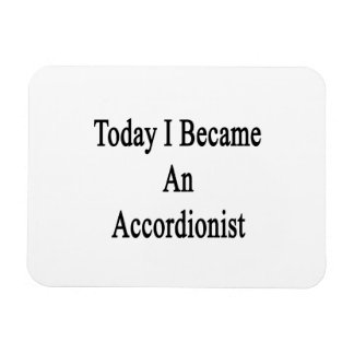 Hice hoy acordeonista