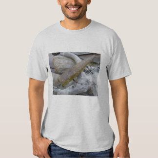 Hickey Do Swimmer Vintage Lure T-Shirt