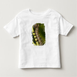 Hickory horned devil caterpillar (Citheronia T Shirt