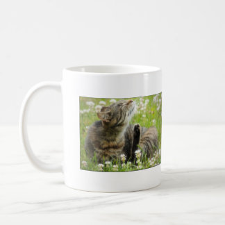 Hickory Road Feral Mugs