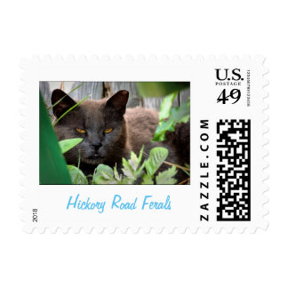 Hickory Road Ferals stamps