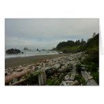 Hidden Beach I at Redwood National Park Card