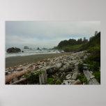 Hidden Beach I at Redwood National Park Poster