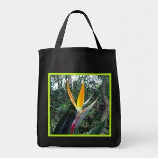 Hidden Beauty Grocery Tote Bag