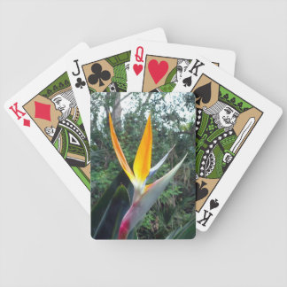 Hidden Beauty Bicycle Playing Cards