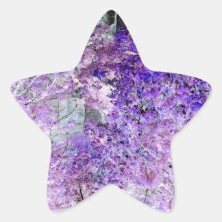 Hidden Beauty Star Sticker