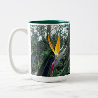Hidden Beauty Two-Tone Coffee Mug