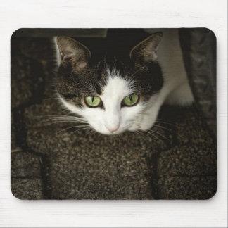 Hidden Cat Mouse Mat