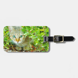 Hidden Domestic Cat with Alert Expression Luggage Tag