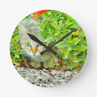 Hidden Domestic Cat with Alert Expression Round Clock
