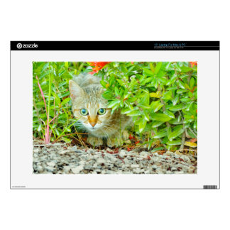 Hidden Domestic Cat with Alert Expression Skins For Laptops
