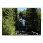 Hidden Falls in Grand Teton National Park Card