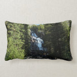 Hidden Falls in Grand Teton National Park Lumbar Pillow