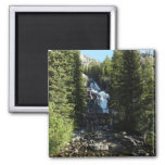 Hidden Falls in Grand Teton National Park Magnet