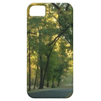 Hidden Falls iPhone 5 Cover