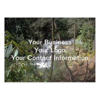 Hidden Falls Large Business Cards (Pack Of 100)
