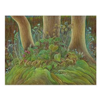 'Hidden Garden' postcard