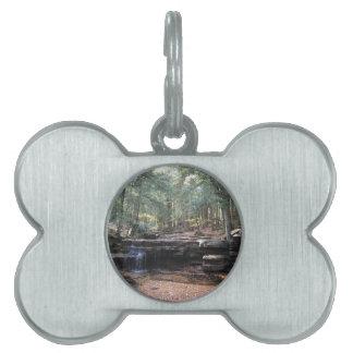 Hidden gem waterfall pet ID tag