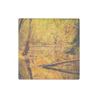 Hidden golden yellow marshes stone magnet