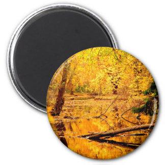 Hidden golden yellow marshes 6 cm round magnet