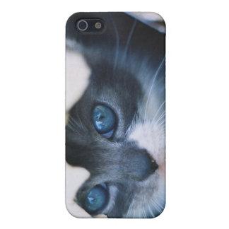 Hidden Kitten Case For iPhone SE/5/5s