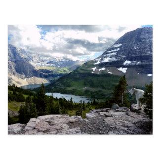Hidden Lake Overlook Glacier National Park Montana Postcard