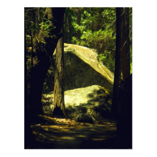 Hidden Path 1 Postcard