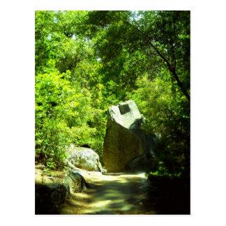 Hidden Path Postcard