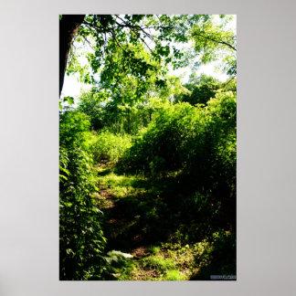 Hidden path poster
