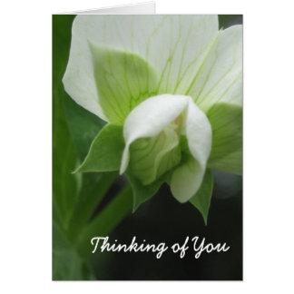 Hidden Peas Customizable Template Note Card
