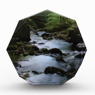 hidden stream in forest acrylic award
