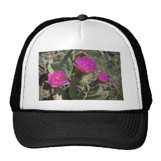 Hidden Thorns Mesh Hats