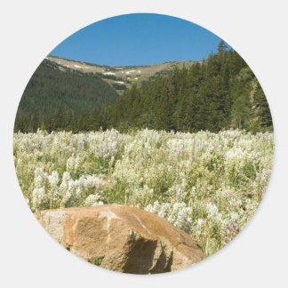 Hidden Valley Classic Round Sticker