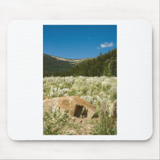Hidden Valley Mouse Pad