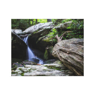 """Hidden Waterfall""  (14"" x 11"") Stretched Canvas Prints"