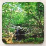 Hidden Waterfall Drink Coaster