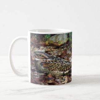 Hidden Whippoorwill Coffee Mug