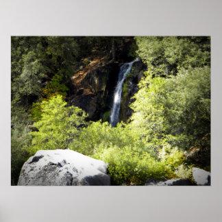 Hidden Woodland Waterfall Poster