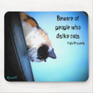 Hidding from haters mouse pad