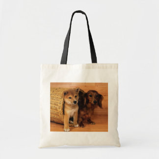 Hide and Seek Bags